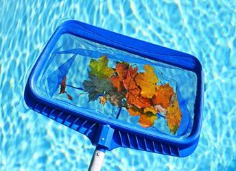 сачок для бассейна